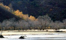 El río corre a través del prado de Ulan Buh Fotografía de archivo