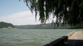 El río Danubio y Willow Tree With Wind Blowing violentamente almacen de video