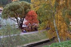 El río de Belakurikh en la caída Imágenes de archivo libres de regalías