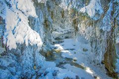 El río de Bistritsa en el invierno imágenes de archivo libres de regalías