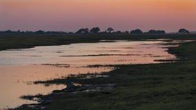 El río de Chobe en la salida del sol Foto de archivo