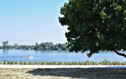 El río de Danubio Fotografía de archivo libre de regalías