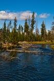 El río de Deschutes Foto de archivo