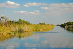 El río de la hierba Fotografía de archivo libre de regalías
