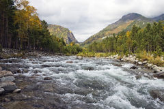 El río de la montaña. Imagen de archivo libre de regalías