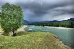 El río de la montaña en las montañas Corriente a través de la garganta el río Piedras y tierra rocosa cerca del río Montaña hermo Foto de archivo libre de regalías