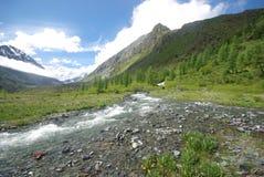 El río de la montaña en las montañas Corriente a través de la garganta el río Piedras y tierra rocosa cerca del río Montaña hermo Imagen de archivo libre de regalías