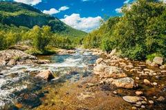 El río de la montaña en Noruega Flujo transparente Fotografía de archivo