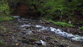 El río de la montaña fluye en paisaje hermoso del bosque oscuro con el arroyo en bosque almacen de metraje de vídeo