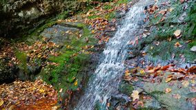 El río de la montaña fluye sobre rocas en bosque del otoño en el día soleado asombroso almacen de metraje de vídeo
