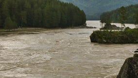 El río de la montaña, rápido atraviesa el valle de la montaña en un día de verano almacen de video