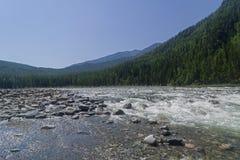 El río de Oka Sayanskaya Siberia, Rusia Foto de archivo