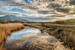 El río de Reginu que llega la playa de Losari en la región de Balagne imágenes de archivo libres de regalías