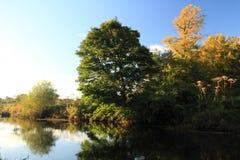El río de Whitecart en una mañana del invierno fotos de archivo