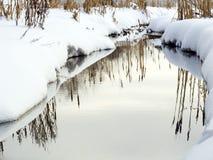 El río del invierno en una madera Foto de archivo libre de regalías