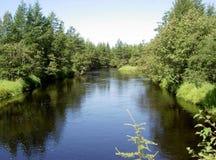 El río del taiga el eje en Sakhalin Imagenes de archivo