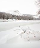 El río Don se cubre con hielo Fotos de archivo libres de regalías