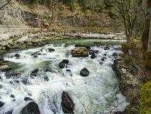 El río Doubs con los árboles cubiertos de musgo acerca a la cascada del du Doubs del saut Fotos de archivo