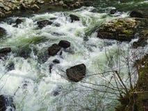 El río Doubs con los árboles cubiertos de musgo acerca a la cascada del du Doubs del saut Imagenes de archivo