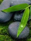 El río empiedra escena del tratamiento del balneario y el bambú se va con lluvia imagen de archivo