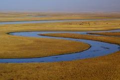 El río en Bayanbulak Fotos de archivo