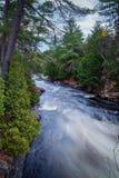 El río en el bosque Foto de archivo