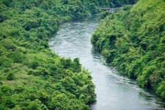 El río en bosque Fotos de archivo libres de regalías