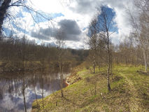 El río en la madera de la primavera Fotografía de archivo