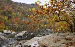 El río en las montañas Fotografía de archivo
