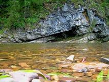 El río en madera Fotografía de archivo libre de regalías