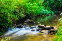 El río en el paisaje del parque nacional de Sri Sat Cha Na Lai, Sukhothai, Tailandia fotografía de archivo