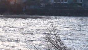 El río estalló sus bancos almacen de metraje de vídeo