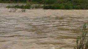 El río estalló sus bancos Agua fangosa almacen de video
