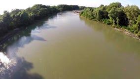 El río fluye en el bosque metrajes