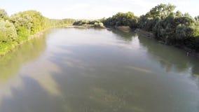 El río fluye en el bosque 10 almacen de metraje de vídeo