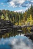 El río fluye entre las rocas y el bosque del taiga Imagenes de archivo