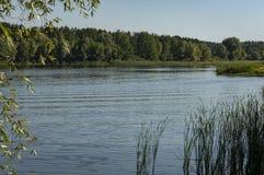 El río fluye a lo largo de las costas boscosas La bahía del río Volga cerca de la ciudad de Ulyanovsk fotos de archivo libres de regalías
