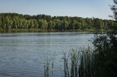 El río fluye a lo largo de las costas boscosas La bahía del río Volga cerca de la ciudad de Ulyanovsk imagen de archivo libre de regalías