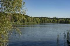 El río fluye a lo largo de las costas boscosas La bahía del río Volga cerca de la ciudad de Ulyanovsk imagen de archivo