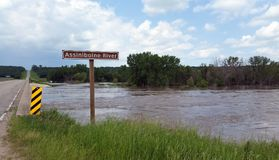 El río inundado de Assiniboine, cerca de Treherne, Manitoba Fotografía de archivo libre de regalías