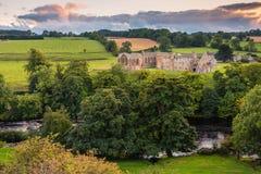 El río junta con te flujos más allá de la abadía de Egglestone Fotos de archivo libres de regalías