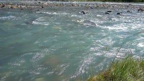 El río más puro de la montaña almacen de video