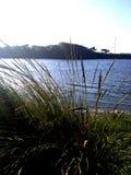 El río Mad en Mckinleyville, Ca Foto de archivo libre de regalías
