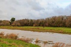 El río Ouse Fotos de archivo libres de regalías