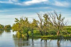El río Paraná, San Nicolas, la Argentina imágenes de archivo libres de regalías