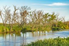 El río Paraná, San Nicolas, la Argentina foto de archivo libre de regalías