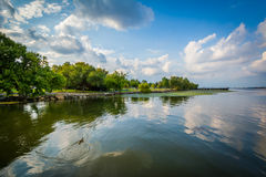 El río Potomac, en Alexandría, Virginia Fotos de archivo