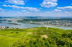 El río Rhine y viñedos verdes cerca de Bingen  Fotografía de archivo libre de regalías