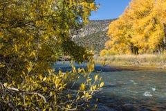 El río Rio Grande Imagen de archivo