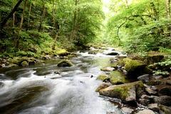 El río salvaje presagiado Foto de archivo